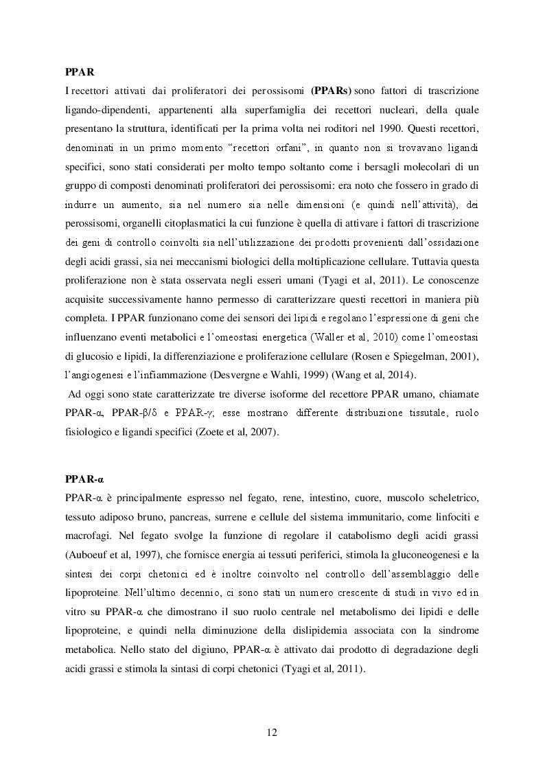 Estratto dalla tesi: Studio computazionale delle interazioni fra il sistema PPAR e molecole di interesse alimentare