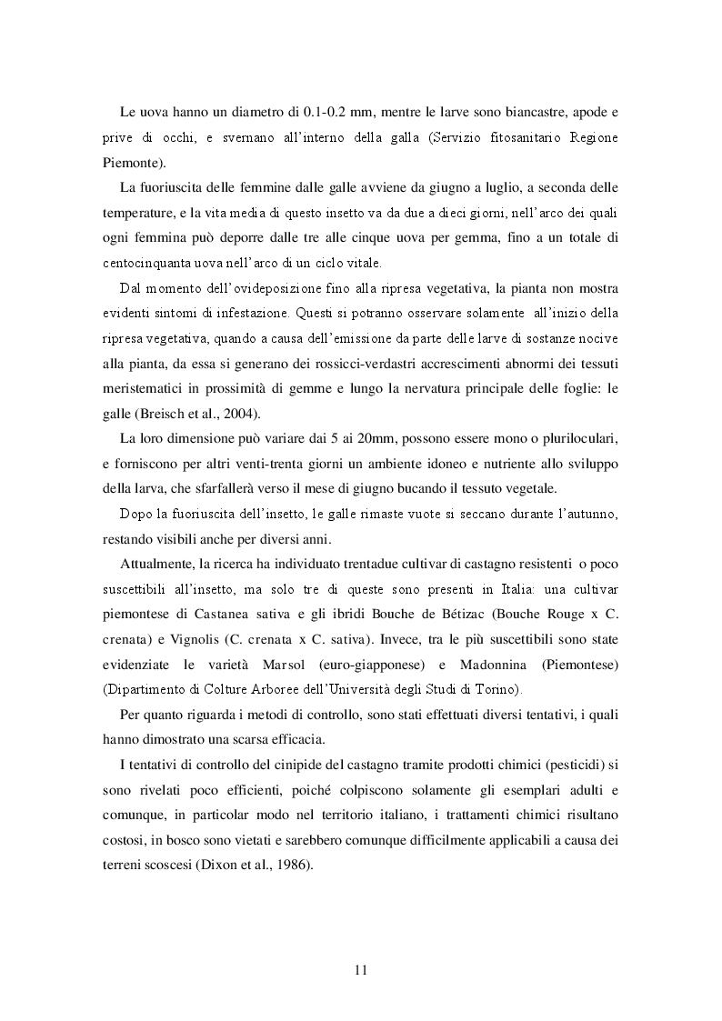 Estratto dalla tesi: Lotta biologica al cinipide del castagno in Veneto: metodi di allevamento di Torymus sinensis e verifica della parassitizzazione