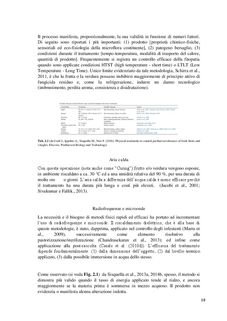 Estratto dalla tesi: Potenzialità dei trattamenti biologici per la protezione dei prodotti orto-frutticoli in post-raccolta: un caso studio.