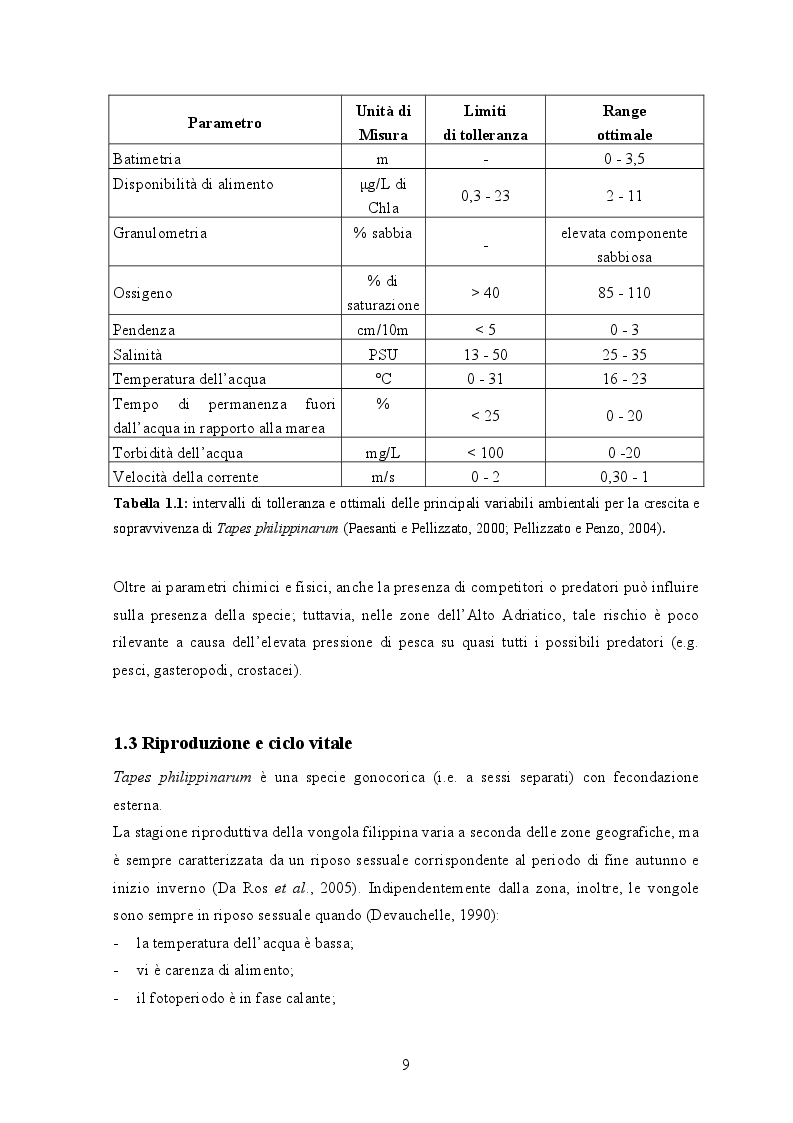 Anteprima della tesi: Gestione dei banchi di seme di Tapes Philippinarum in Laguna di Venezia: applicazione di un modello di vocazionalità, Pagina 7