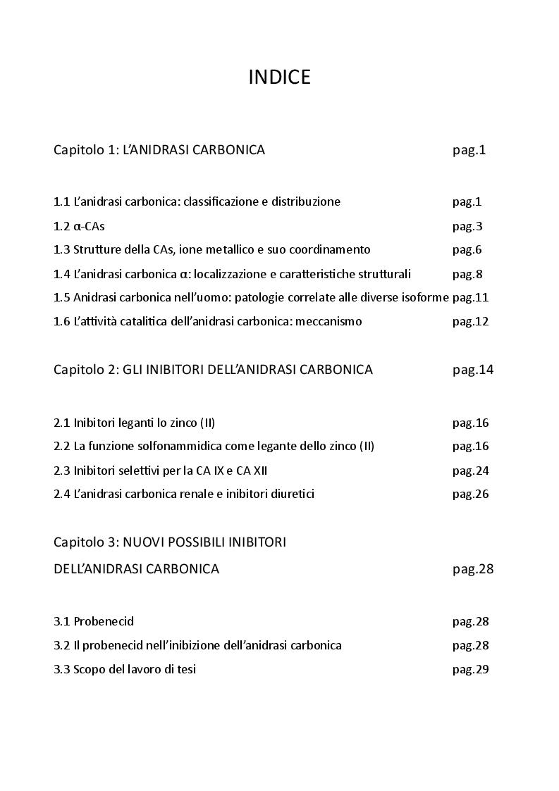 Indice della tesi: Impatto della stereochimica sull'inibizione dell'Anidrasi Carbonica da parte di nuovi derivati del Probenecid, Pagina 1