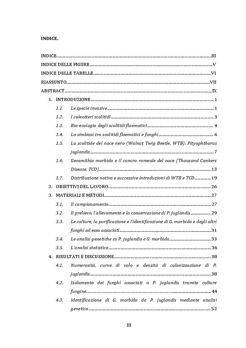 Indice della tesi: Ruolo di Pityophthorus juglandis (Coleoptera, Curculionidae) nei meccanismi di diffusione del fungo fitopatogeno Geosmithia morbida, Pagina 1