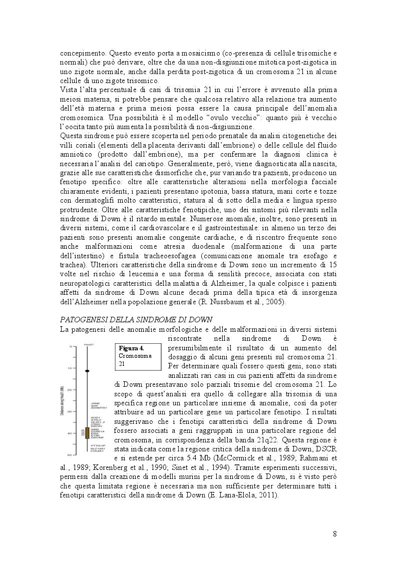 Estratto dalla tesi: Due metodi innovativi per correggere la trisomia 21: silenziamento mediato da XIST e rimozione del cromosoma extra