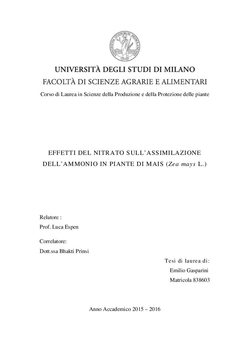 Anteprima della tesi: Effetti del nitrato sull'assimilazione dell'ammonio in piante di mais (Zea mays L.), Pagina 1