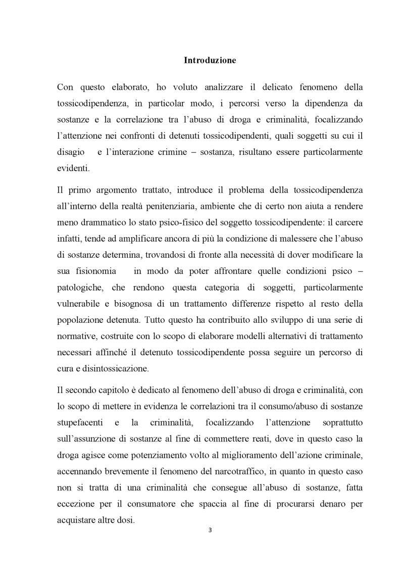 Anteprima della tesi: Percorsi verso la dipendenza da sostanze, Pagina 2