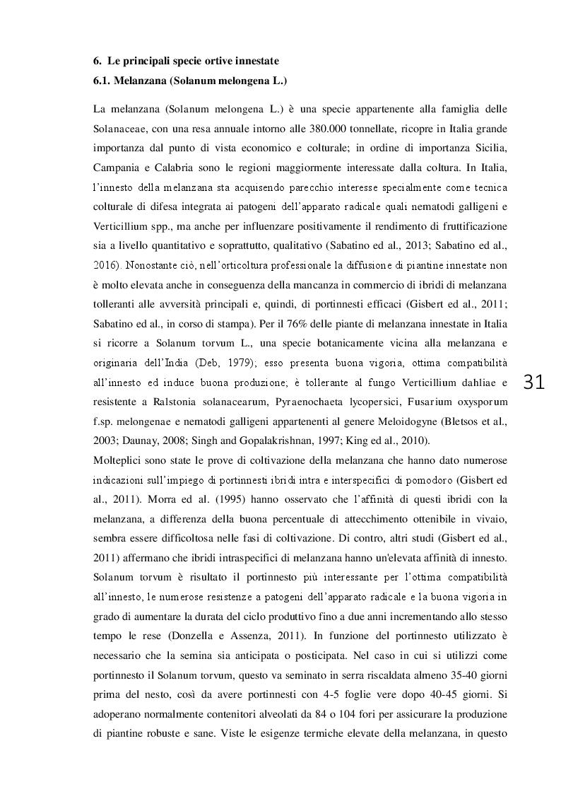 Anteprima della tesi: L'innesto erbaceo in orticoltura aspetti agronomici e problematiche, Pagina 2