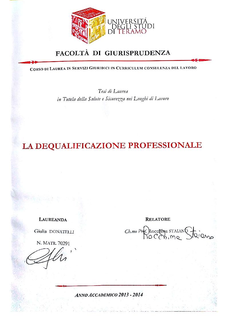 Anteprima della tesi: La dequalificazione professionale, Pagina 1