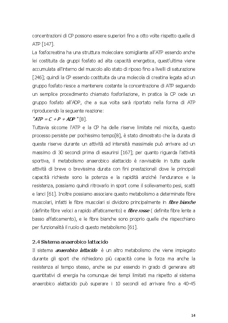 Estratto dalla tesi: Dieta chetogenica e suoi risvolti nell'attività sportiva