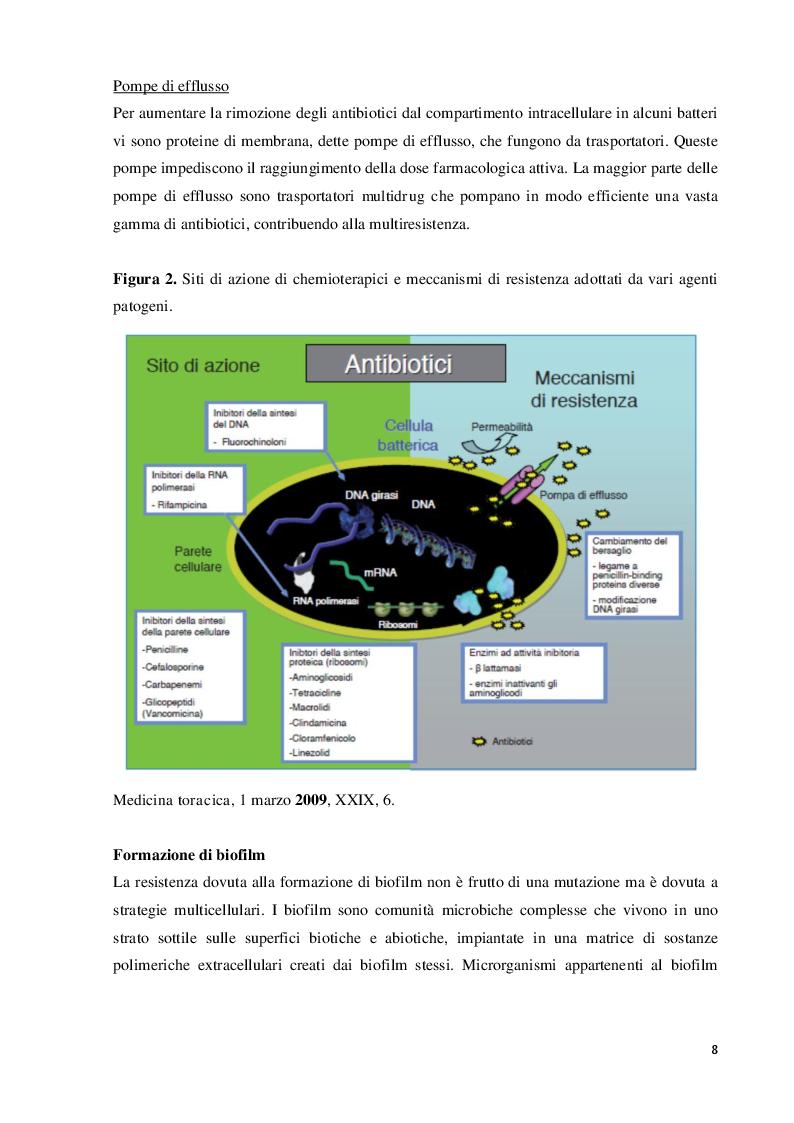 Anteprima della tesi: Agenti attivi contro patogeni ESKAPE: sintesi di derivati pirazolici, Pagina 2