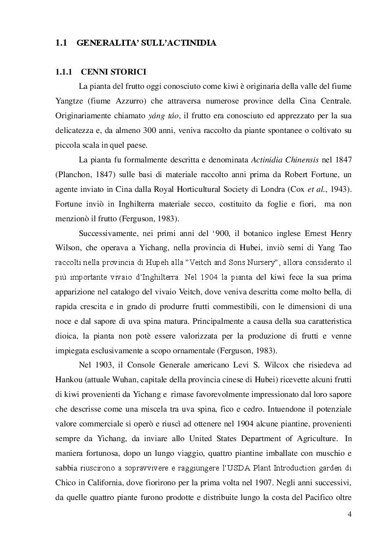 Anteprima della tesi: Strategie innovative per il contenimento di Pseudomonas syringae pv.actinidiae, Pagina 2