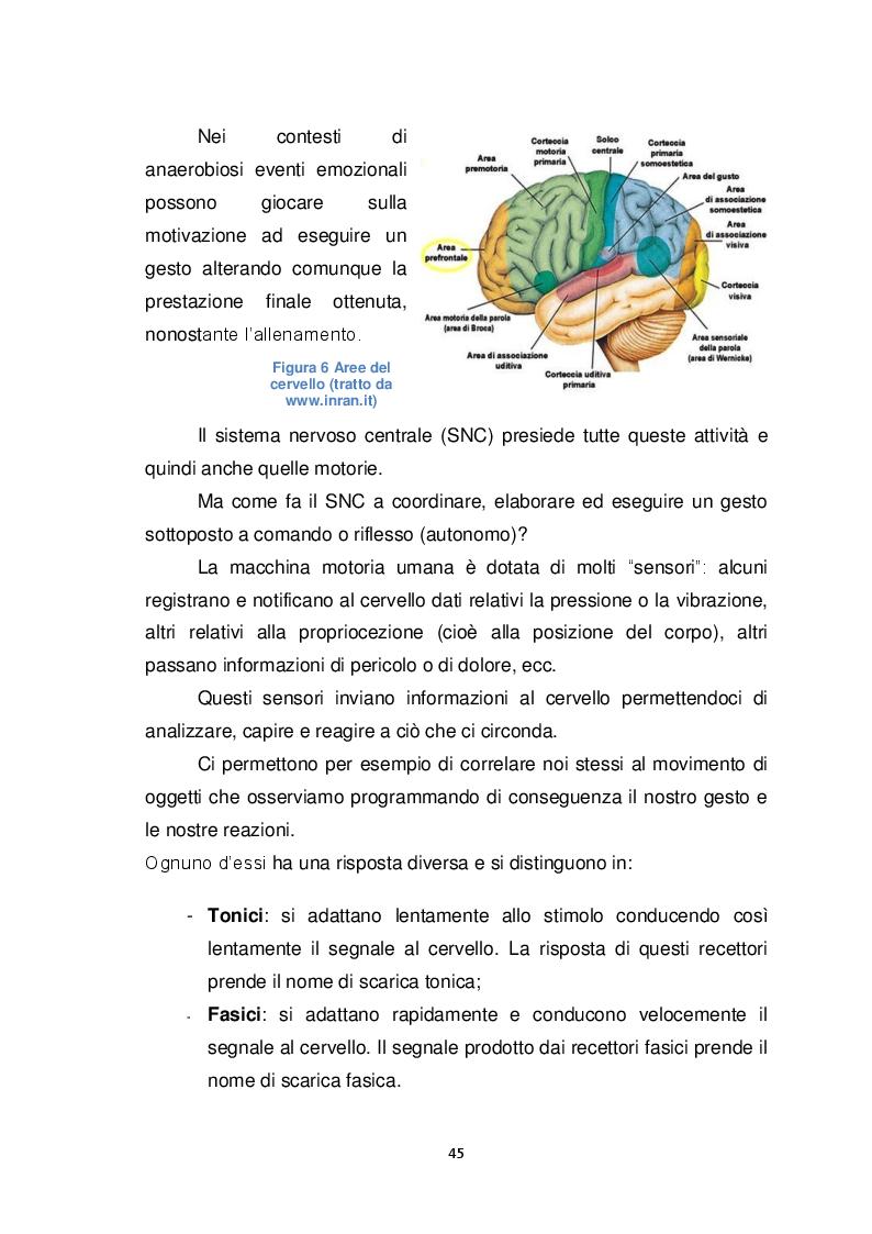 Anteprima della tesi: Il Biomeccanico: una nuova figura professionale al servizio del calcio, Pagina 6