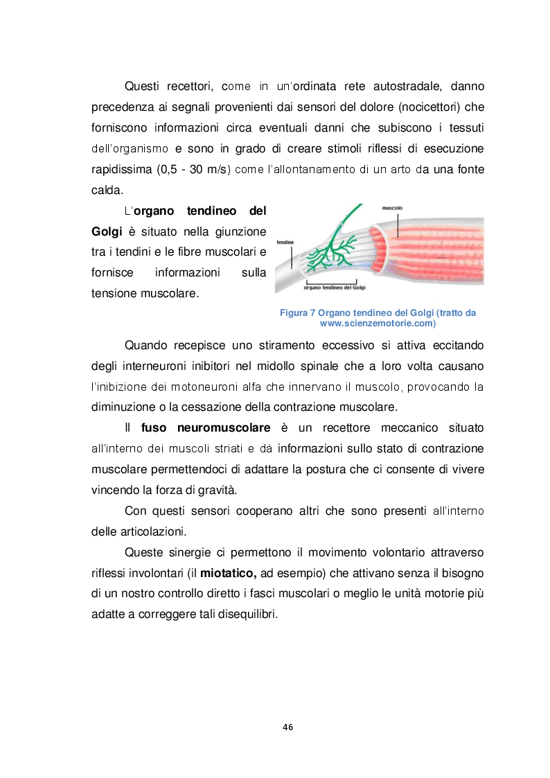 Anteprima della tesi: Il Biomeccanico: una nuova figura professionale al servizio del calcio, Pagina 7