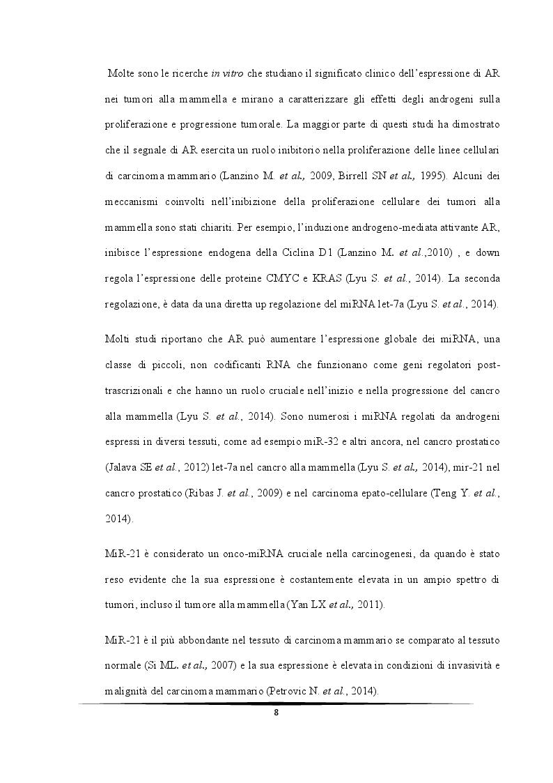 Anteprima della tesi: Ruolo protettivo degli Androgeni sulla crescita di cellule di carcinoma mammario indotta da miR-21, Pagina 4