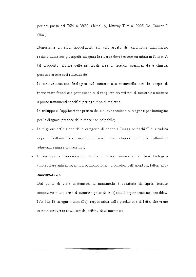 Anteprima della tesi: Ruolo protettivo degli Androgeni sulla crescita di cellule di carcinoma mammario indotta da miR-21, Pagina 7