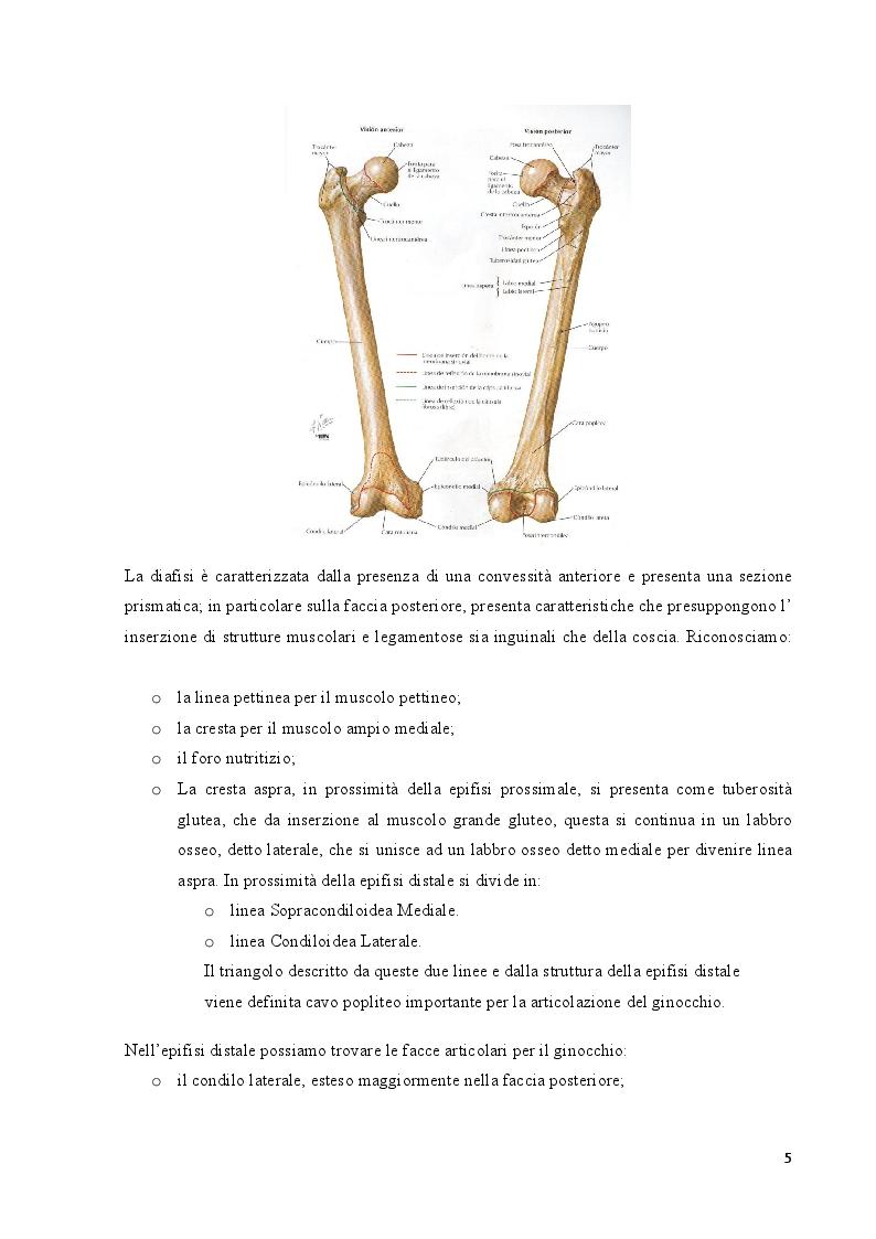 Anteprima della tesi: Strategie cliniche nelle fratture del collo femore dell'anziano: confronto tra due metodiche chirurgiche, Pagina 6