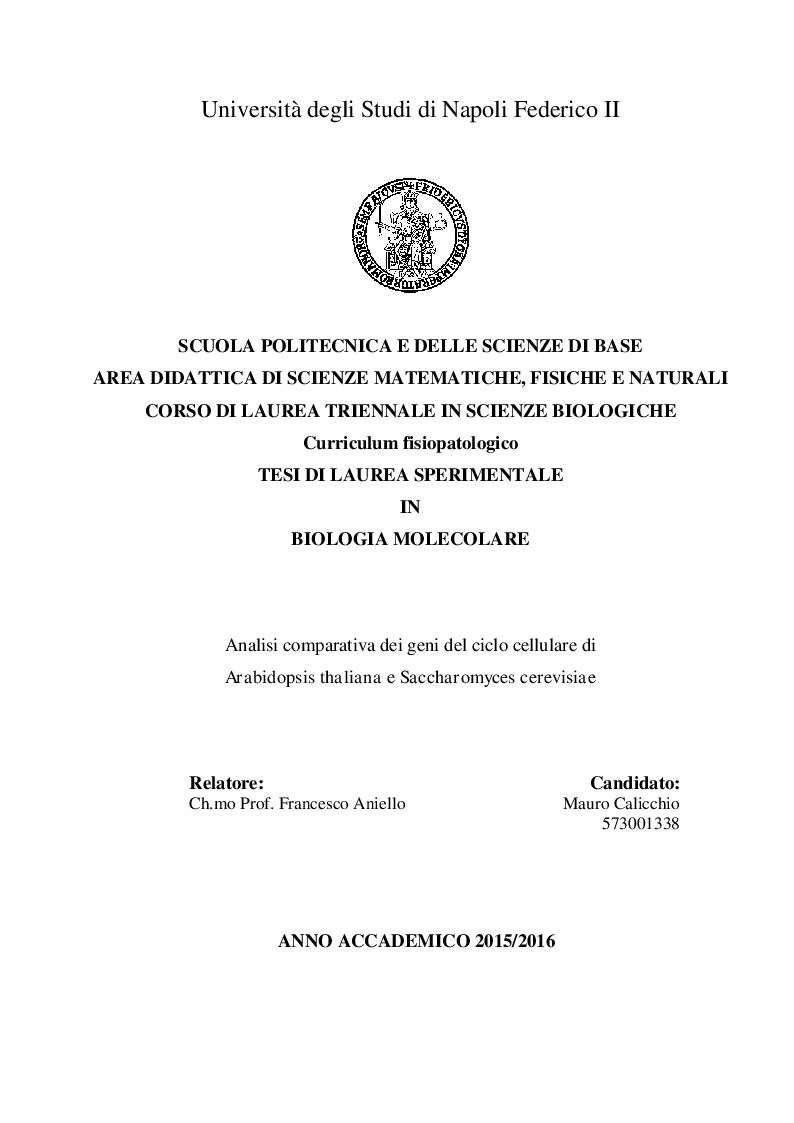 Anteprima della tesi: Analisi comparativa dei geni del ciclo cellulare in A. Thaliana e S. Cerevisiae, Pagina 1