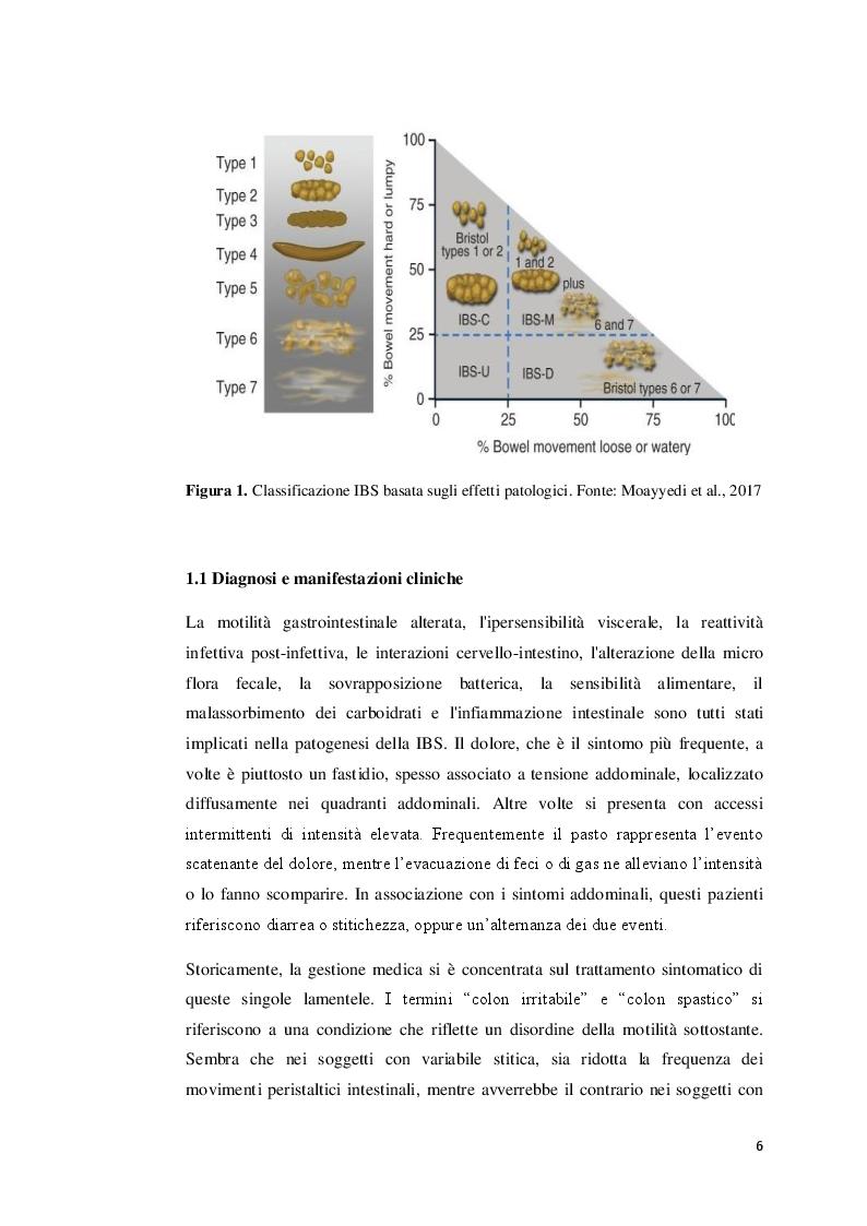 Anteprima della tesi: La sindrome dell'intestino irritabile: aspetti generali, correlazione con il sistema nervoso enterico e trattamenti terapeutici, Pagina 5