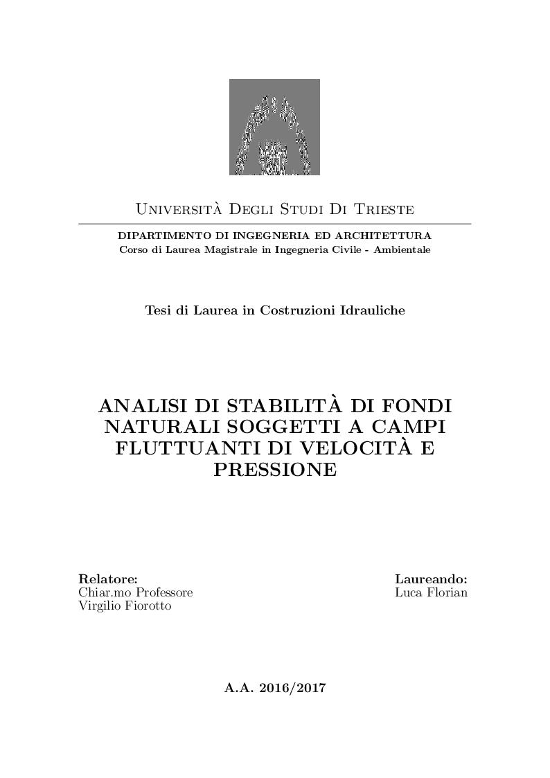 Anteprima della tesi: Analisi di stabilità di fondi naturali soggetti a campi fluttuanti di velocità e pressione, Pagina 1
