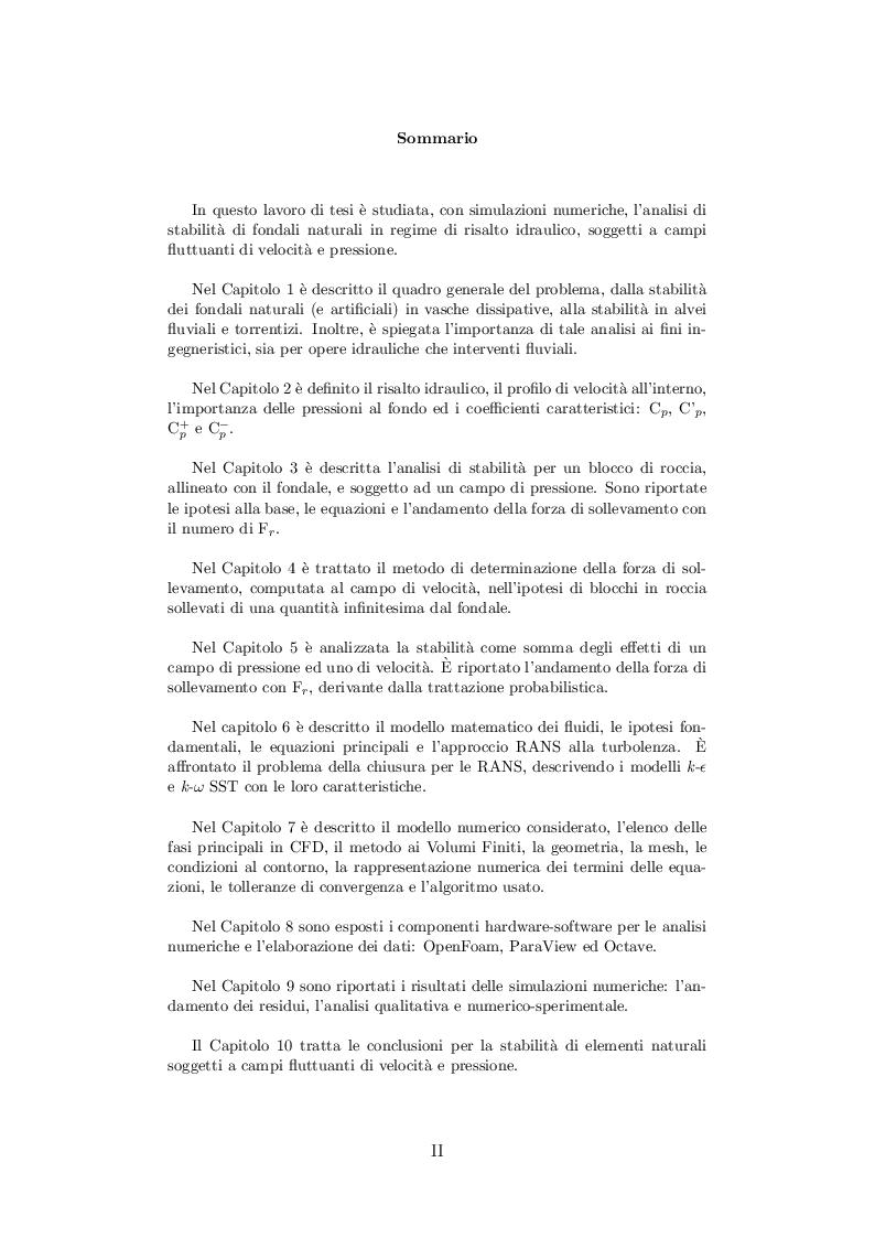 Anteprima della tesi: Analisi di stabilità di fondi naturali soggetti a campi fluttuanti di velocità e pressione, Pagina 2