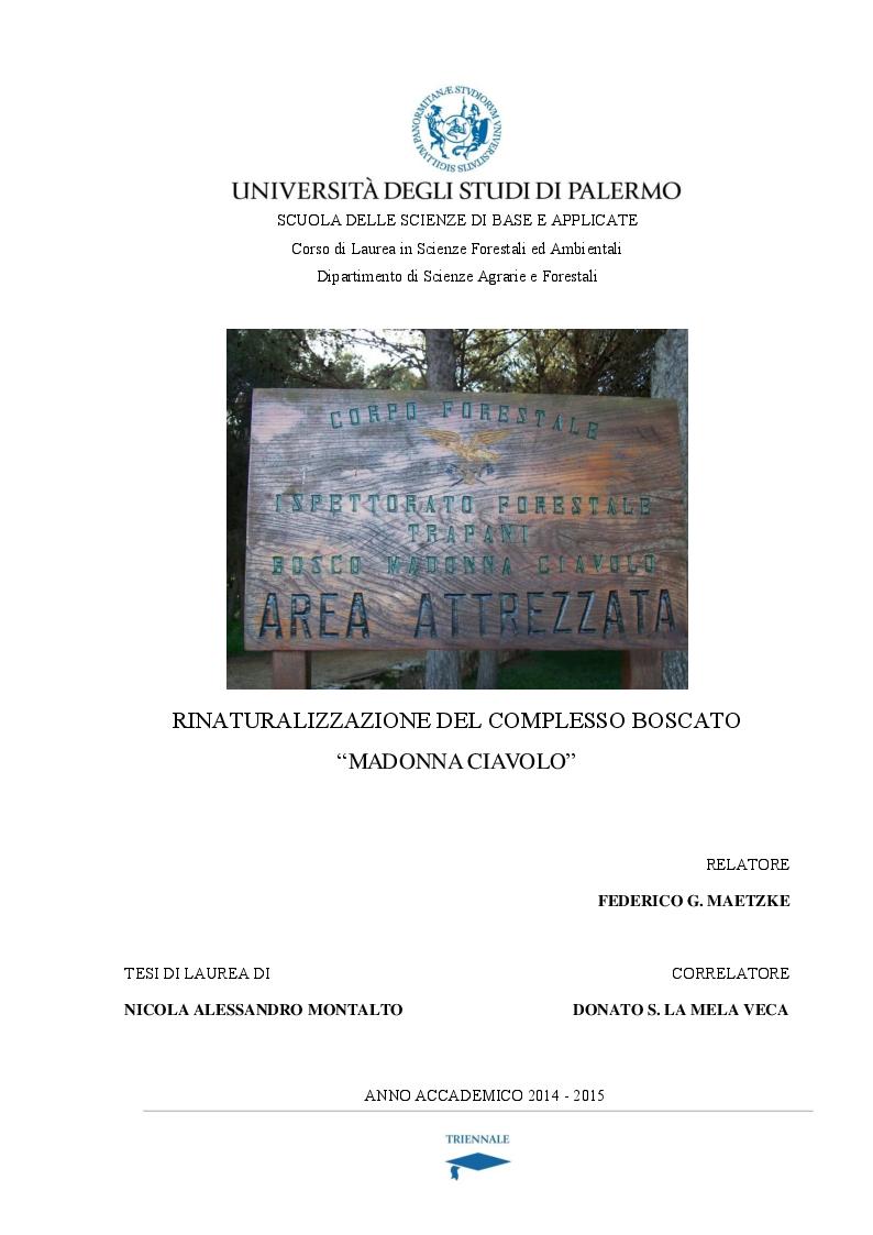 Anteprima della tesi: Rinaturalizzazione del complesso boscato ''Madonna Ciavolo'', Pagina 1