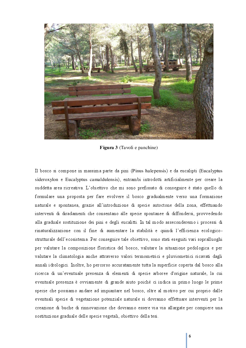 Anteprima della tesi: Rinaturalizzazione del complesso boscato ''Madonna Ciavolo'', Pagina 4
