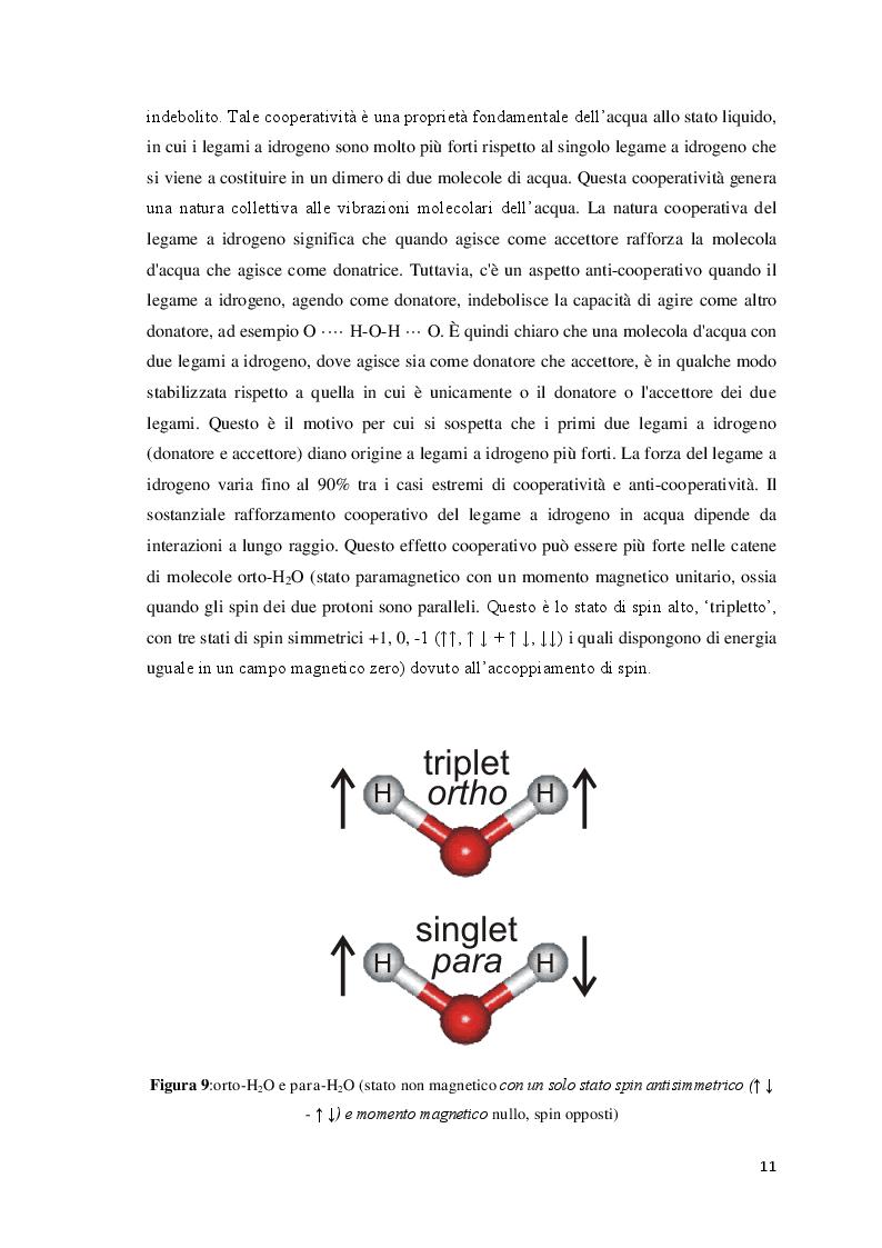 Anteprima della tesi: Effetto di radiazioni elettromagnetiche su alcune proprietà dell'acqua, Pagina 7