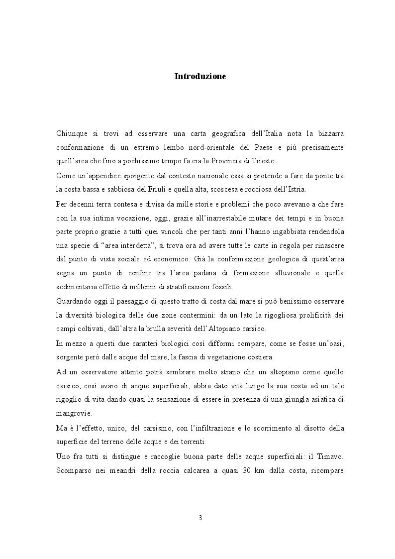 Anteprima della tesi: Portopiccolo: una nuova opportunità turistica per il Nord-Adriatico, Pagina 2
