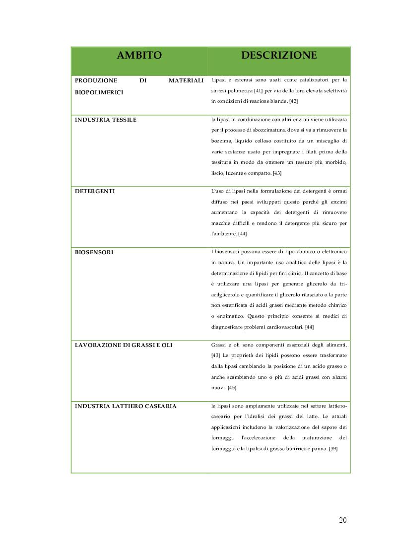 Anteprima della tesi: Nuovo Nanocatalizzatore per la valorizzazione di scarti provenienti dall'industria del pomodoro, Pagina 3
