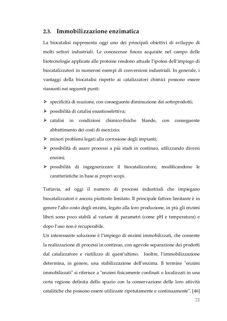Anteprima della tesi: Nuovo Nanocatalizzatore per la valorizzazione di scarti provenienti dall'industria del pomodoro, Pagina 4