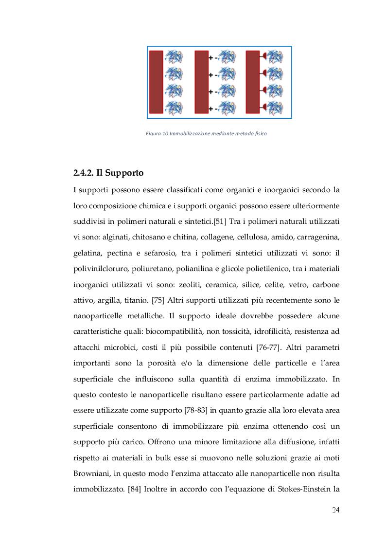 Anteprima della tesi: Nuovo Nanocatalizzatore per la valorizzazione di scarti provenienti dall'industria del pomodoro, Pagina 7