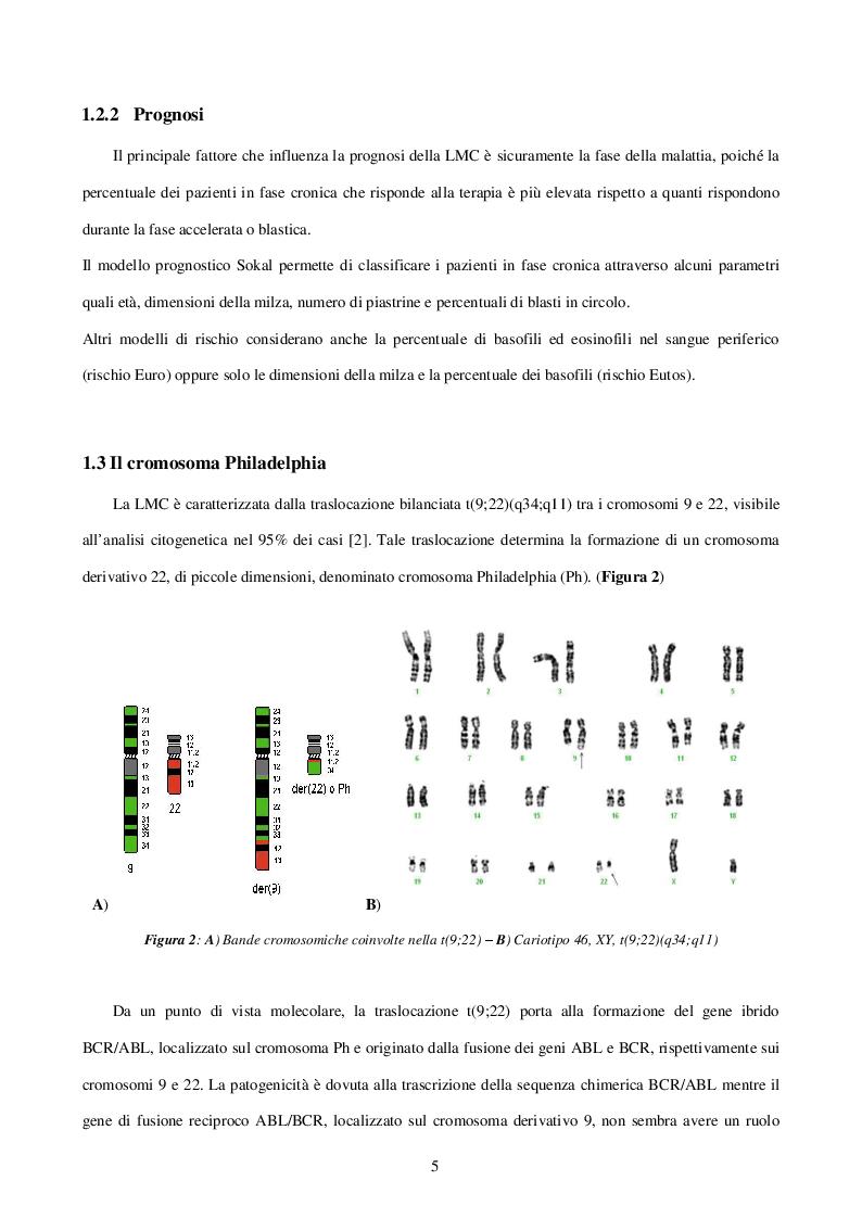Anteprima della tesi: Caratterizzazione e ruolo delle alterazioni citogenetiche che insorgono nel clone Philadelphia negativo durante il trattamento con inibitori delle tirosinchinasi nella Leucemia Mieloide Cronica, Pagina 5