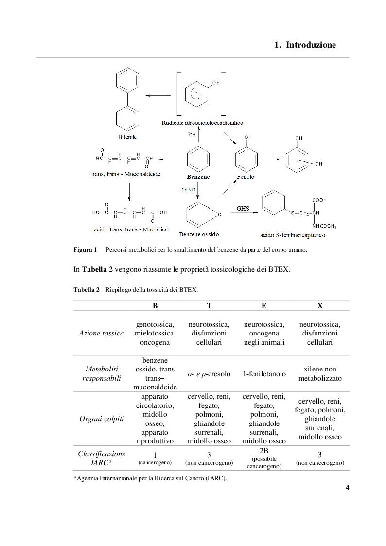 Anteprima della tesi: Sviluppo e validazione di un metodo analitico basato sulla gas cromatografia con rivelazione a ionizzazione da scarica a barriera (GC/BID) per la determinazione dei BTEX in campioni di acqua, Pagina 5