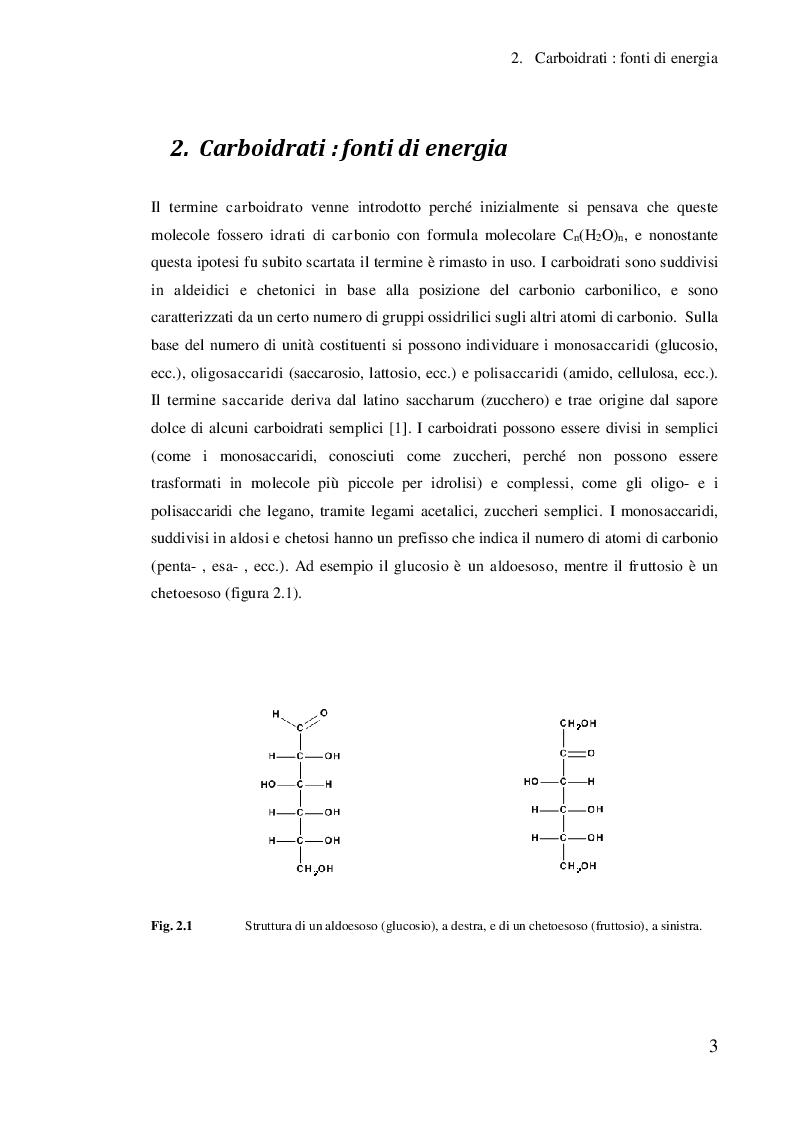 Anteprima della tesi: Studio dell'effetto di alcuni co-catalizzatori metallici sull'elettrocatalisi dell'oro per l'analisi dei carboidrati, Pagina 4