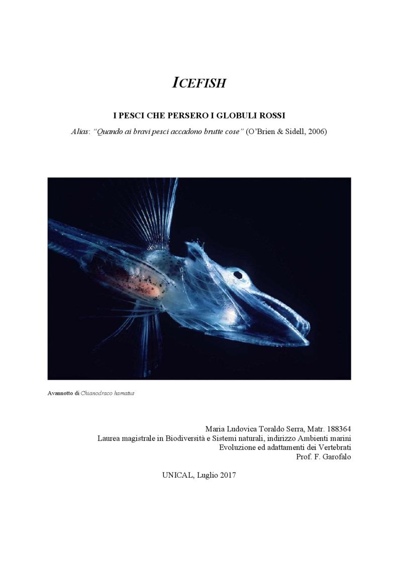 Anteprima della tesi: Icefish, i pesci che persero i globuli rossi, Pagina 1