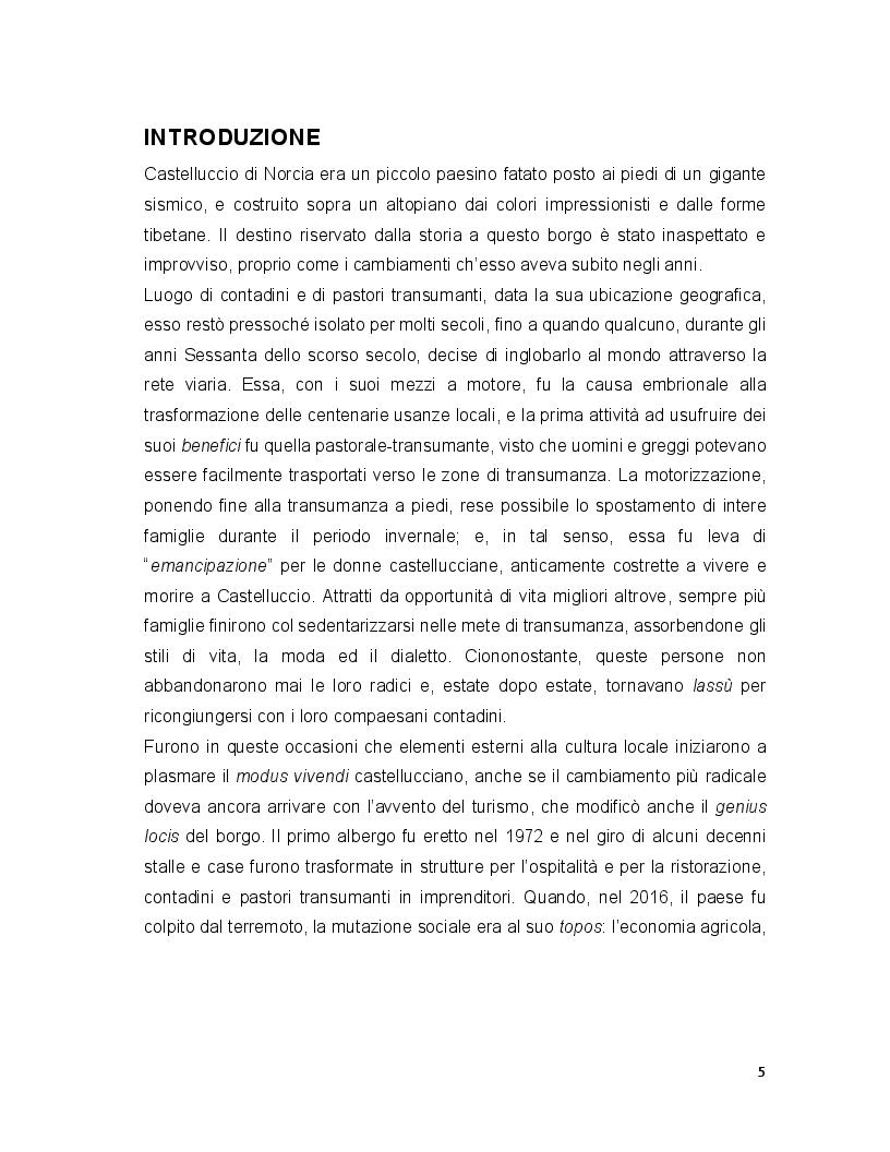 Anteprima della tesi: Turismo e terremoto: analisi degli impatti sismici sui flussi turistici a Castelluccio di Norcia. Proposte per la ripartenza e la riqualificazione del settore., Pagina 2