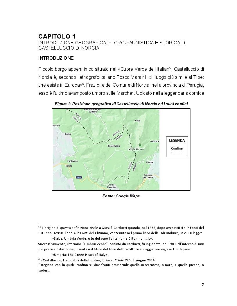 Anteprima della tesi: Turismo e terremoto: analisi degli impatti sismici sui flussi turistici a Castelluccio di Norcia. Proposte per la ripartenza e la riqualificazione del settore., Pagina 4
