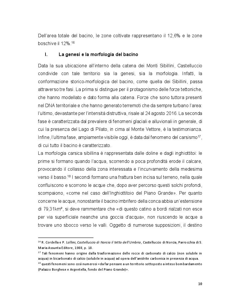 Anteprima della tesi: Turismo e terremoto: analisi degli impatti sismici sui flussi turistici a Castelluccio di Norcia. Proposte per la ripartenza e la riqualificazione del settore., Pagina 7