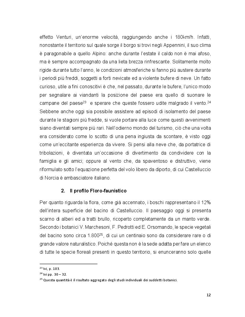 Anteprima della tesi: Turismo e terremoto: analisi degli impatti sismici sui flussi turistici a Castelluccio di Norcia. Proposte per la ripartenza e la riqualificazione del settore., Pagina 9