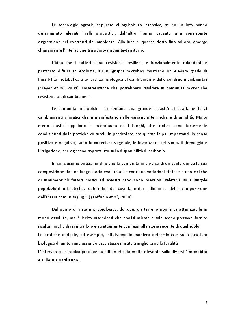 Anteprima della tesi: Studio della Biodiversità nelle Comunità Microbiche nei Vigneti del Montepulciano d'Abruzzo, Pagina 5