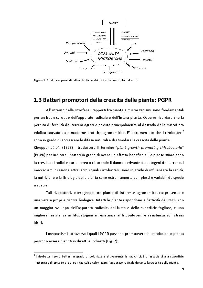 Anteprima della tesi: Studio della Biodiversità nelle Comunità Microbiche nei Vigneti del Montepulciano d'Abruzzo, Pagina 6
