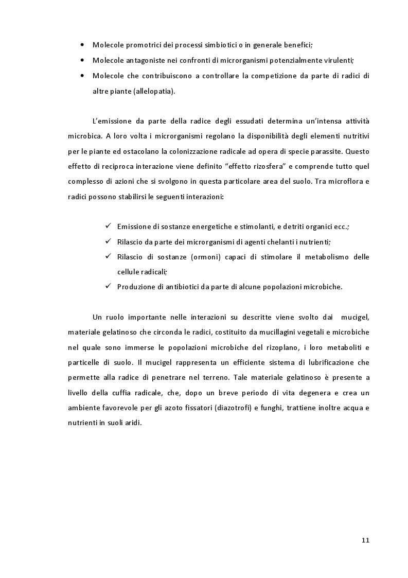 Anteprima della tesi: Studio della Biodiversità nelle Comunità Microbiche nei Vigneti del Montepulciano d'Abruzzo, Pagina 8