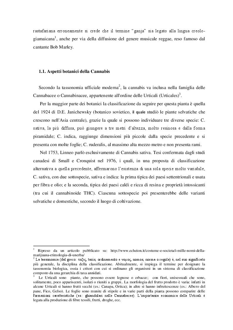 Anteprima della tesi: Cannabis. Aspetti di una devianza., Pagina 5