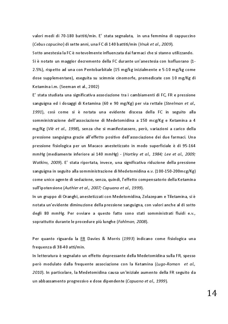 Estratto dalla tesi: Protocolli applicabili nella pratica anestesiologica sui primati