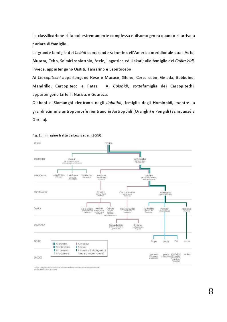 Anteprima della tesi: Protocolli applicabili nella pratica anestesiologica sui primati, Pagina 6