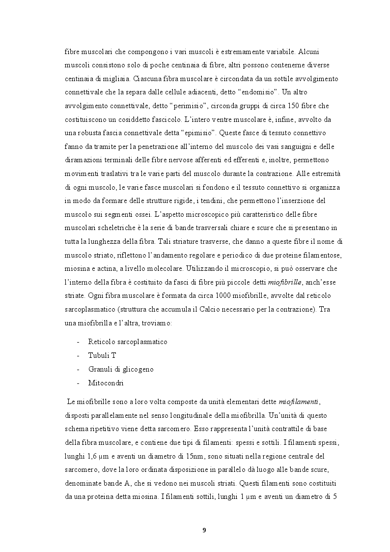 Estratto dalla tesi: La forza rapida: aspetti anatomo-fisiologici e metodologie di allenamento specifiche per il calciatore moderno