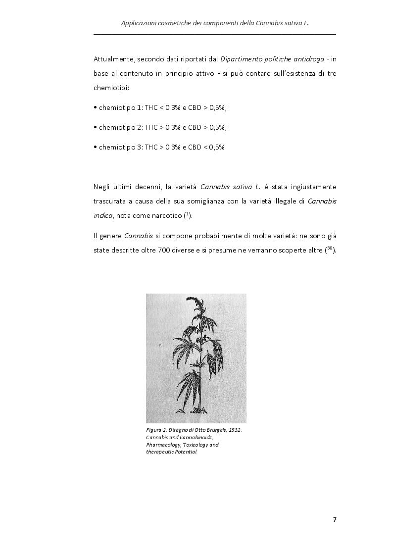 Anteprima della tesi: Applicazioni cosmetiche dei componenti della Cannabis sativa, Pagina 4