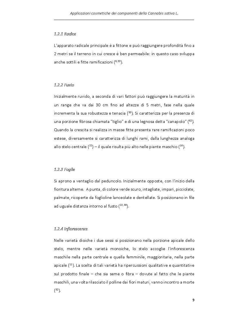 Anteprima della tesi: Applicazioni cosmetiche dei componenti della Cannabis sativa, Pagina 6