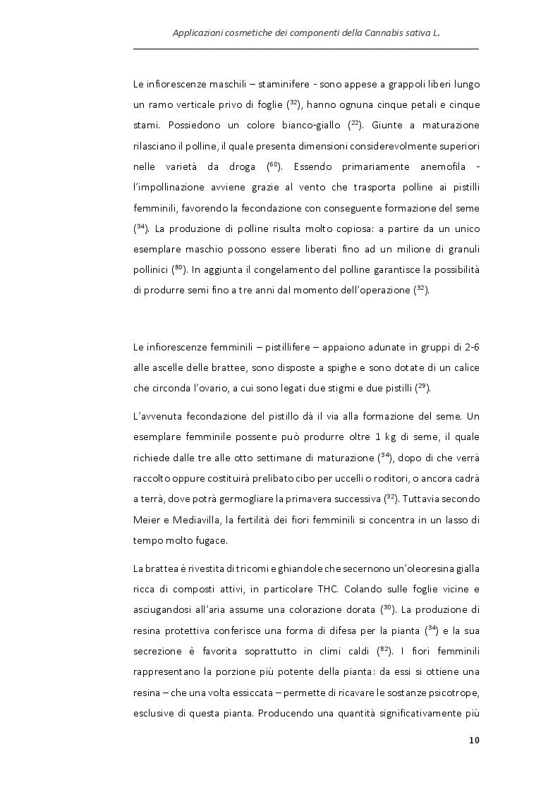 Anteprima della tesi: Applicazioni cosmetiche dei componenti della Cannabis sativa, Pagina 7