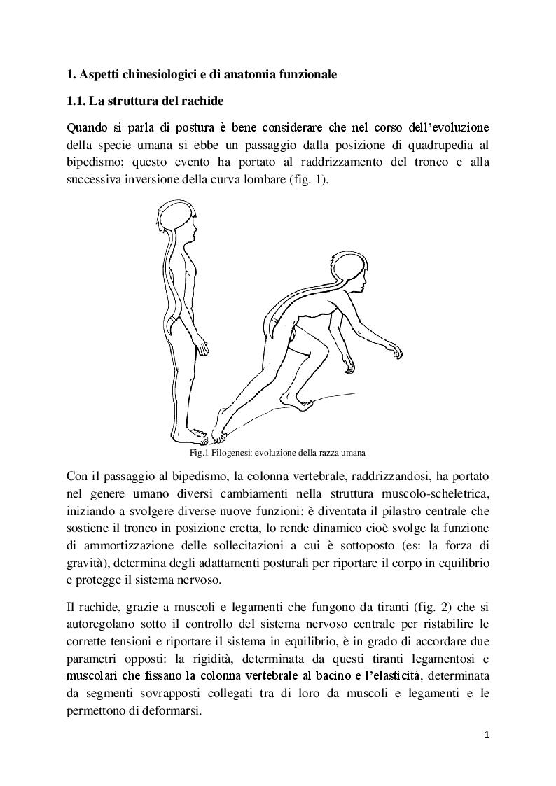 Anteprima della tesi: L'analisi posturale e la pedana stabilometrica-propriocettiva, Pagina 2