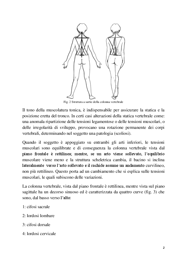 Anteprima della tesi: L'analisi posturale e la pedana stabilometrica-propriocettiva, Pagina 3